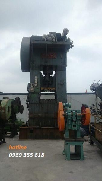 may-dap-bliss-800-ton